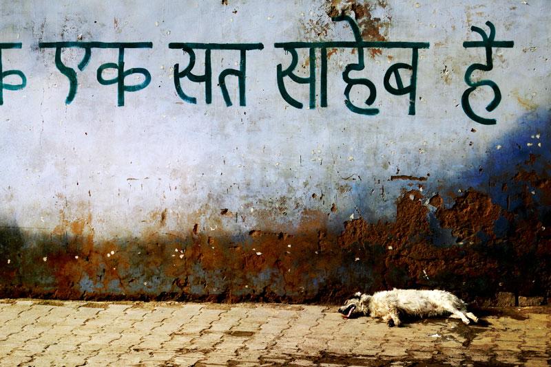 008_Jaisalmer-(INDIA)-WS