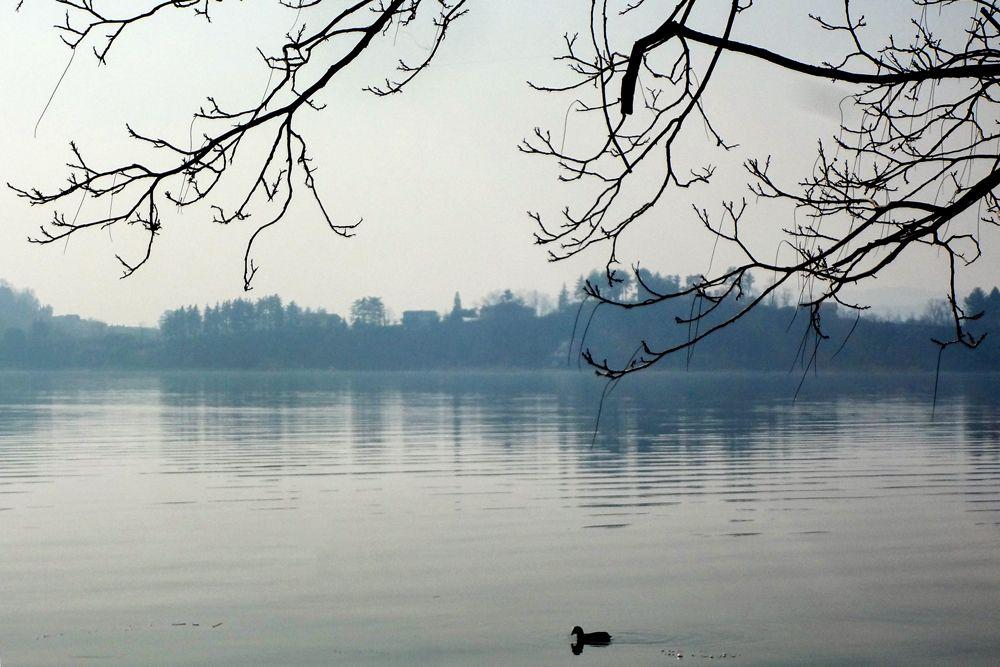 Varese 2012 (Photo by Francesco Menghini)